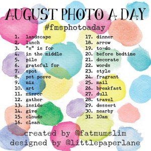 August 2014 Photo A Day
