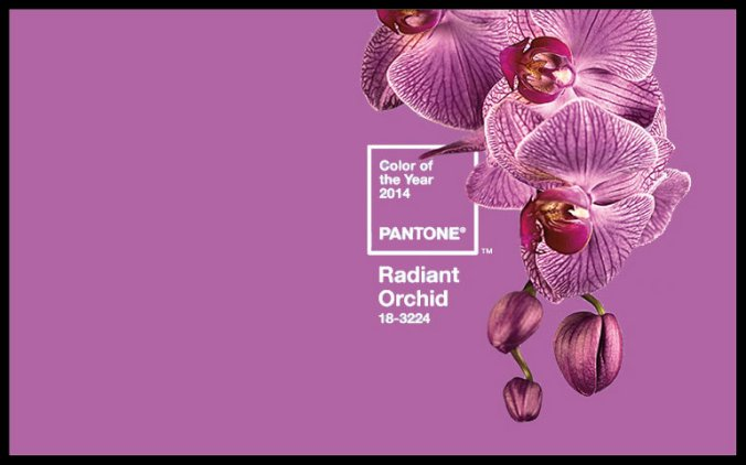 Pantone-Color-of-the-Year-2014-is-Radiant-Orchid-–-Another-shade-of-purple