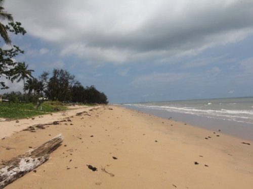 Beach Saunders